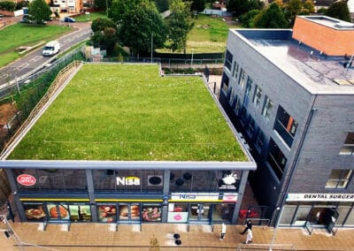 Supermarket Green Roof